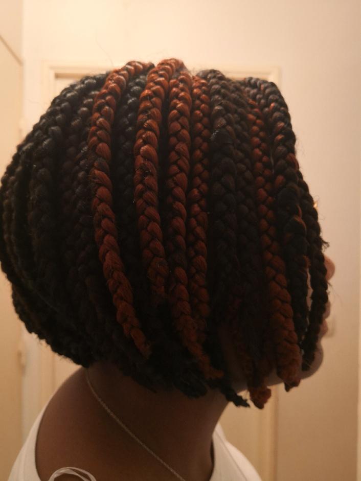 salon de coiffure afro tresse tresses box braids crochet braids vanilles tissages paris 75 77 78 91 92 93 94 95 PLSRSBHU