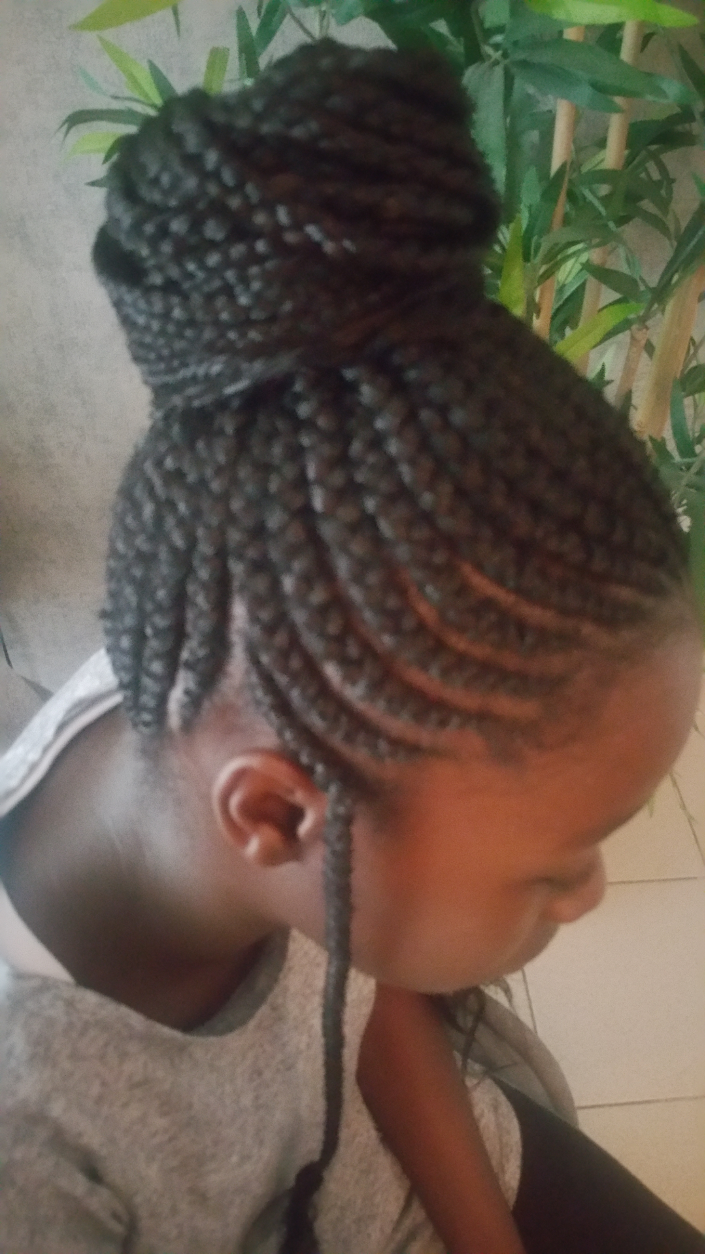 salon de coiffure afro tresse tresses box braids crochet braids vanilles tissages paris 75 77 78 91 92 93 94 95 SDTIZGHP