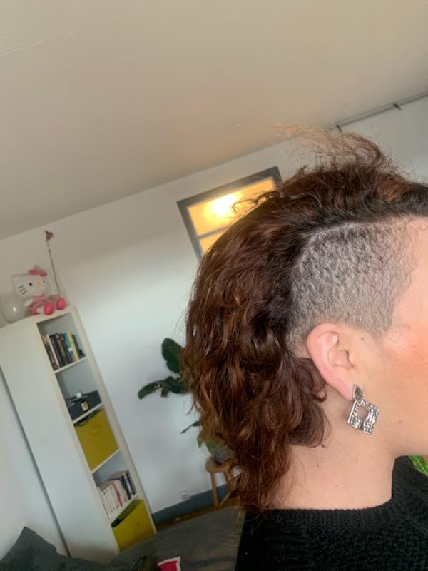 salon de coiffure afro tresse tresses box braids crochet braids vanilles tissages paris 75 77 78 91 92 93 94 95 PNZTRGHL