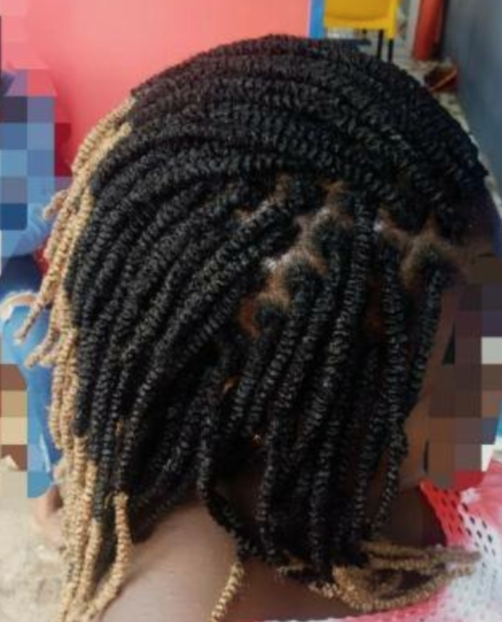 salon de coiffure afro tresse tresses box braids crochet braids vanilles tissages paris 75 77 78 91 92 93 94 95 TTWRXPYN