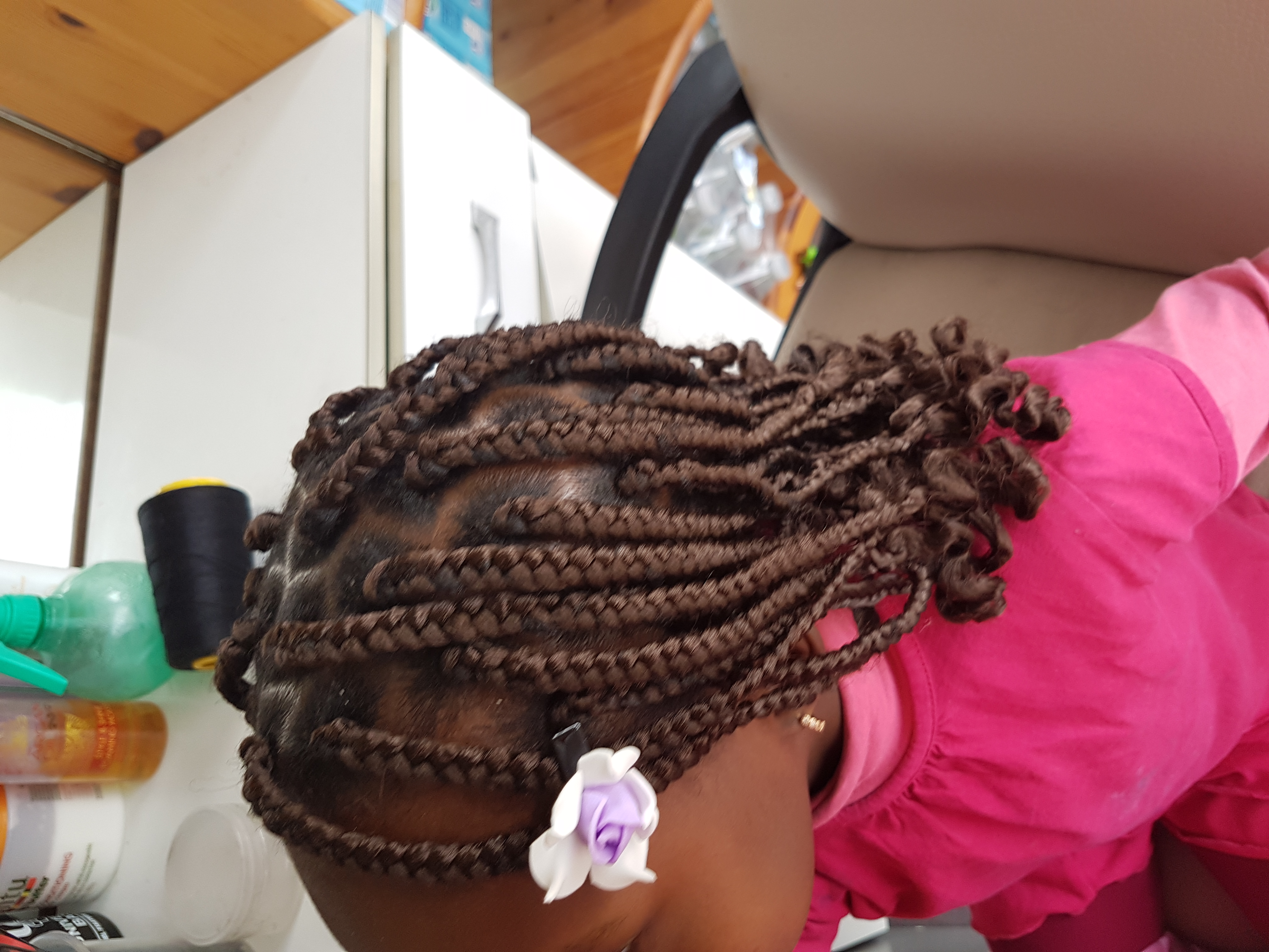 salon de coiffure afro tresse tresses box braids crochet braids vanilles tissages paris 75 77 78 91 92 93 94 95 LGBFZCOG