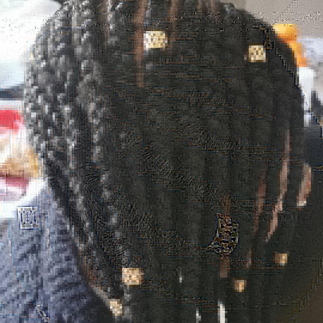 salon de coiffure afro tresse tresses box braids crochet braids vanilles tissages paris 75 77 78 91 92 93 94 95 FHKMKIPZ