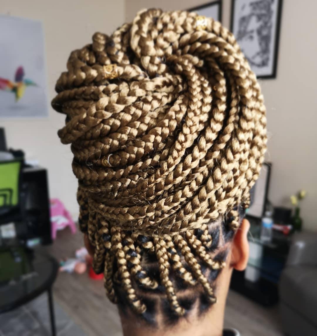 salon de coiffure afro tresse tresses box braids crochet braids vanilles tissages paris 75 77 78 91 92 93 94 95 FWRMEJMM