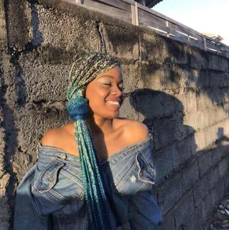 salon de coiffure afro tresse tresses box braids crochet braids vanilles tissages paris 75 77 78 91 92 93 94 95 XLVYIXYW