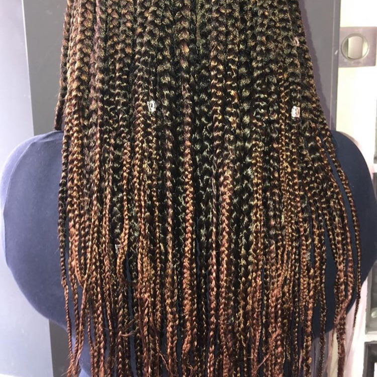 salon de coiffure afro tresse tresses box braids crochet braids vanilles tissages paris 75 77 78 91 92 93 94 95 RNEBHNJO