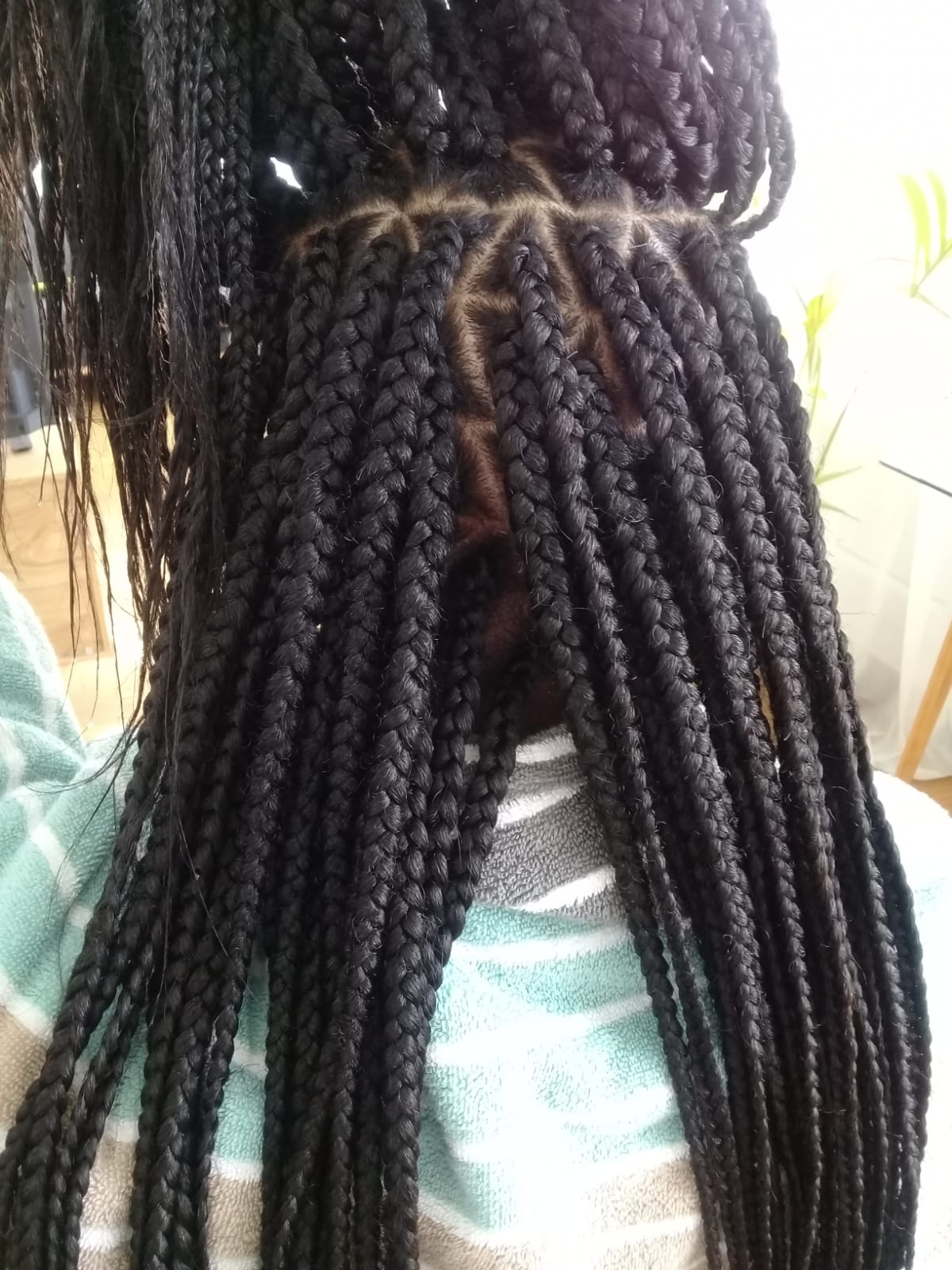 salon de coiffure afro tresse tresses box braids crochet braids vanilles tissages paris 75 77 78 91 92 93 94 95 RRKPGPBJ