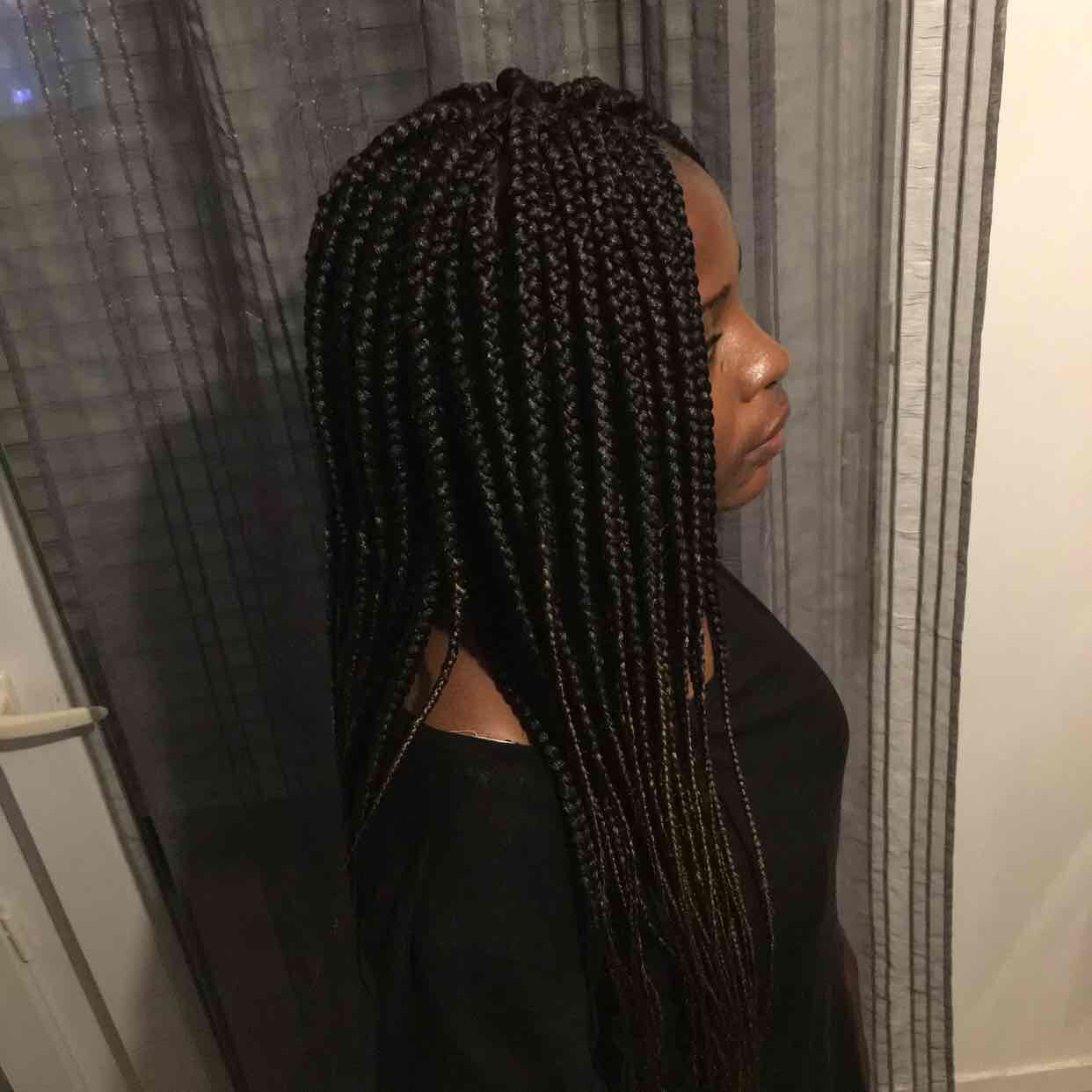 salon de coiffure afro tresse tresses box braids crochet braids vanilles tissages paris 75 77 78 91 92 93 94 95 ELBAJLLC