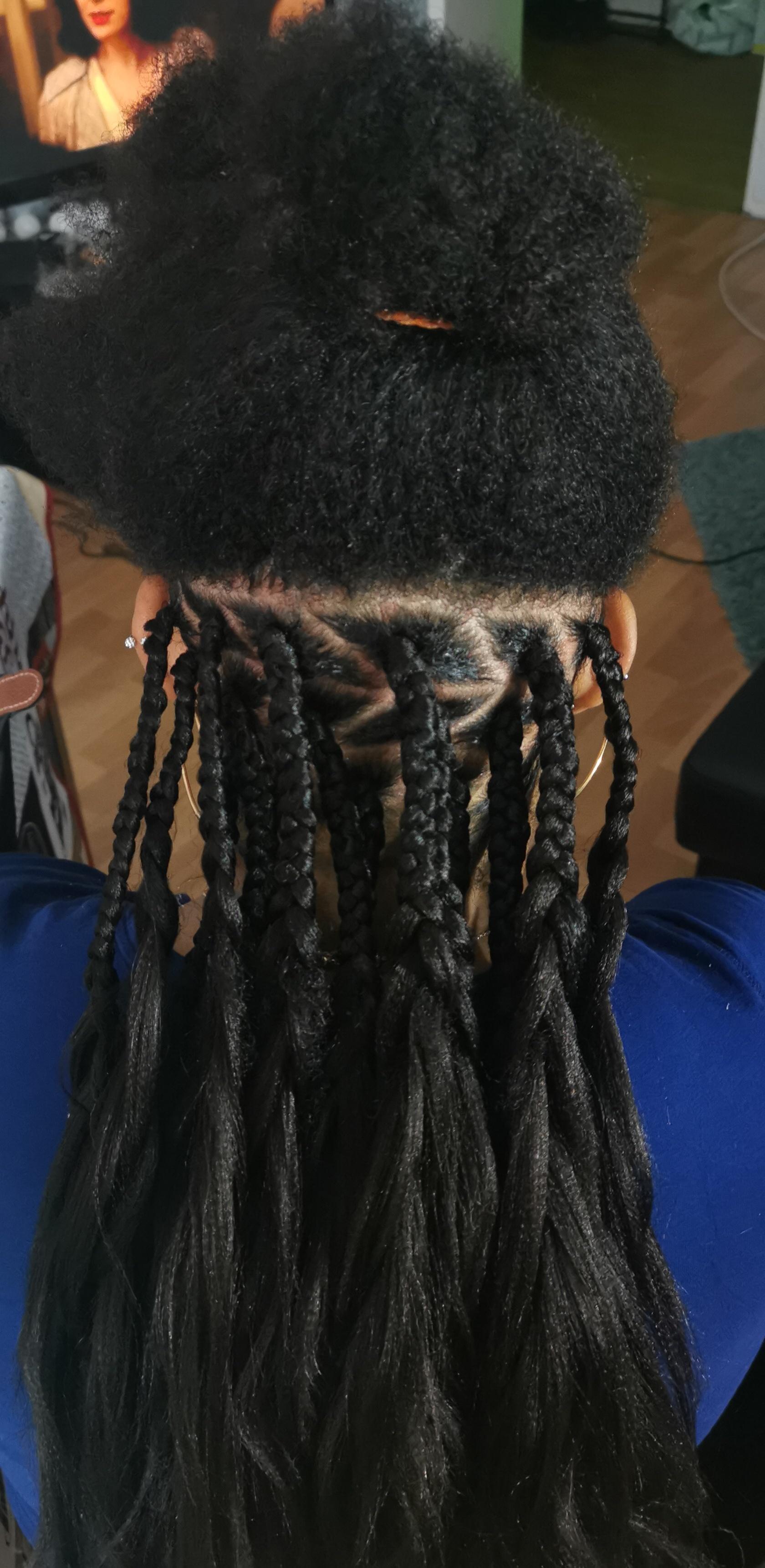salon de coiffure afro tresse tresses box braids crochet braids vanilles tissages paris 75 77 78 91 92 93 94 95 TMJVZUSU
