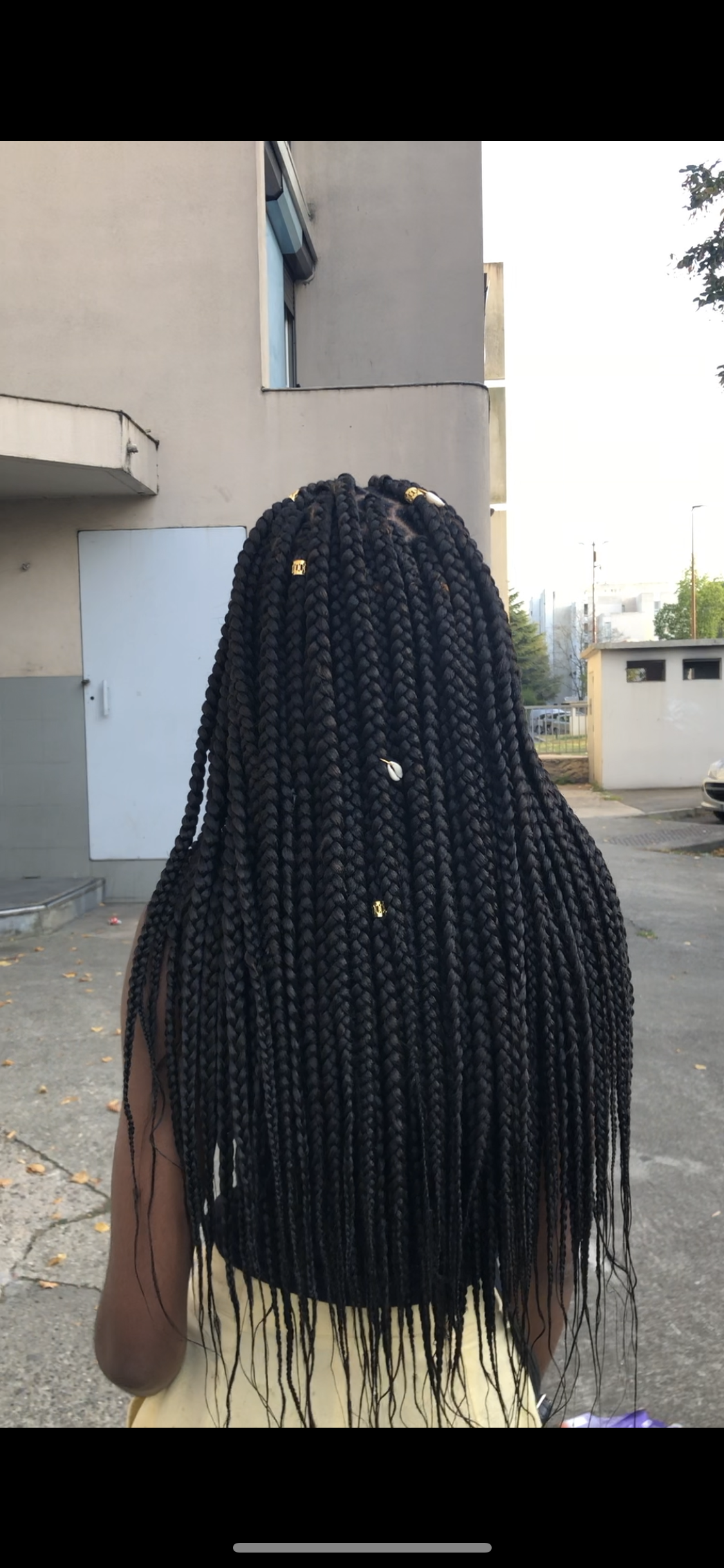 salon de coiffure afro tresse tresses box braids crochet braids vanilles tissages paris 75 77 78 91 92 93 94 95 SMXYJANM