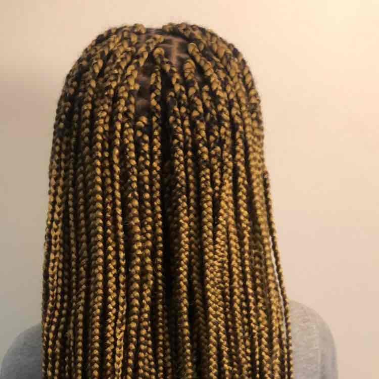 salon de coiffure afro tresse tresses box braids crochet braids vanilles tissages paris 75 77 78 91 92 93 94 95 JWFRDHHA