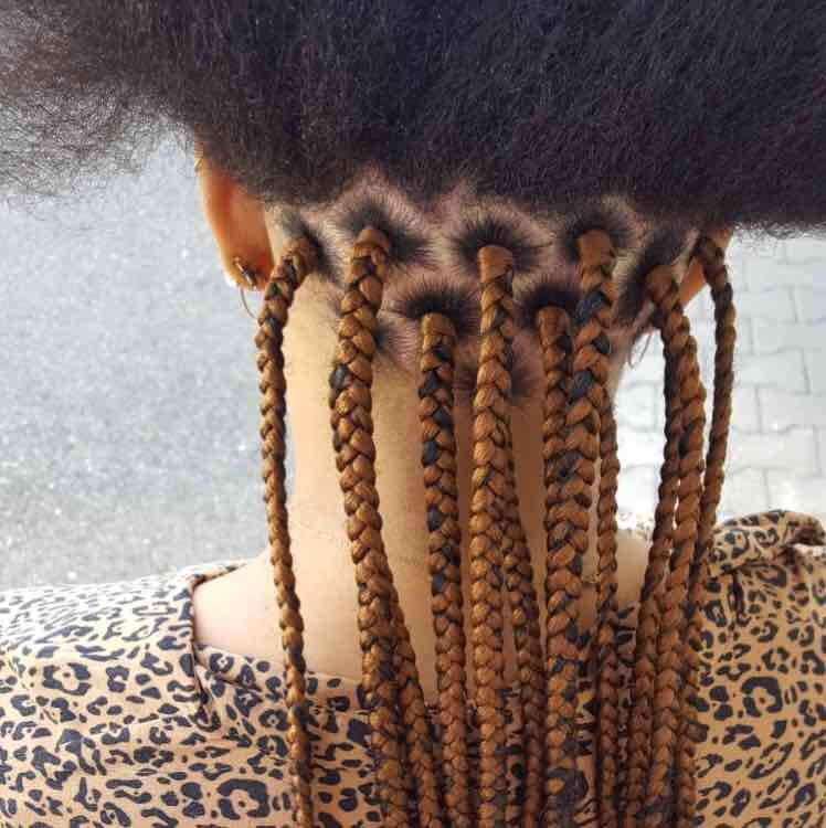salon de coiffure afro tresse tresses box braids crochet braids vanilles tissages paris 75 77 78 91 92 93 94 95 AQNQMCZT