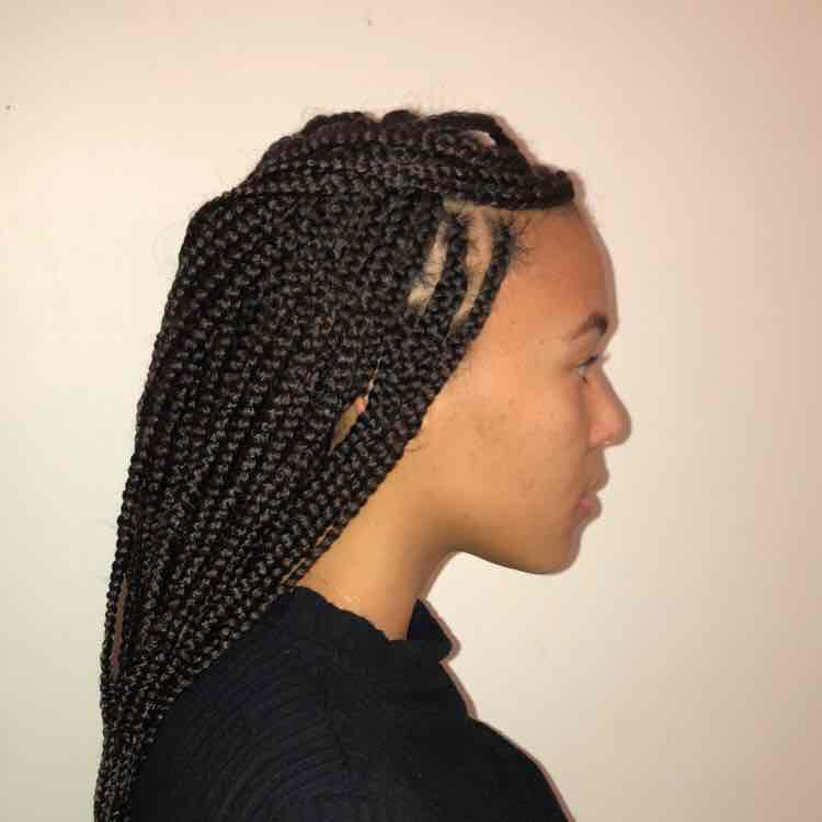 salon de coiffure afro tresse tresses box braids crochet braids vanilles tissages paris 75 77 78 91 92 93 94 95 UMTVUCVN