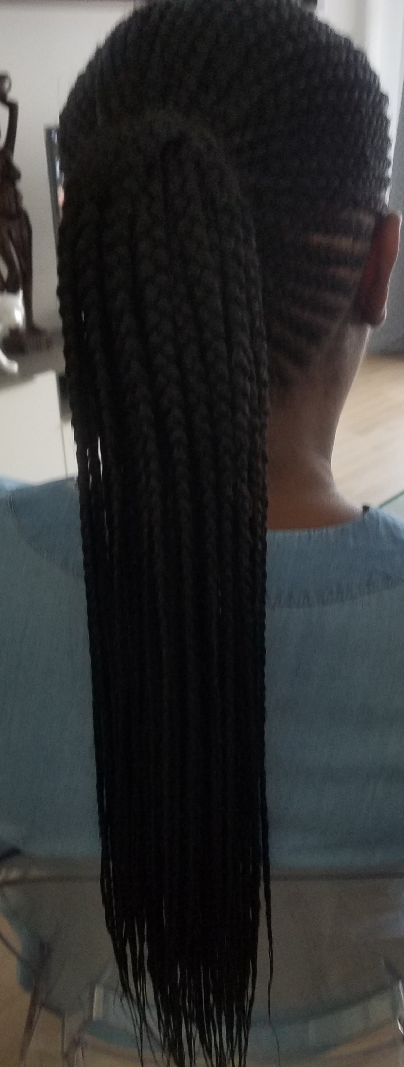 salon de coiffure afro tresse tresses box braids crochet braids vanilles tissages paris 75 77 78 91 92 93 94 95 OTUNYGLM
