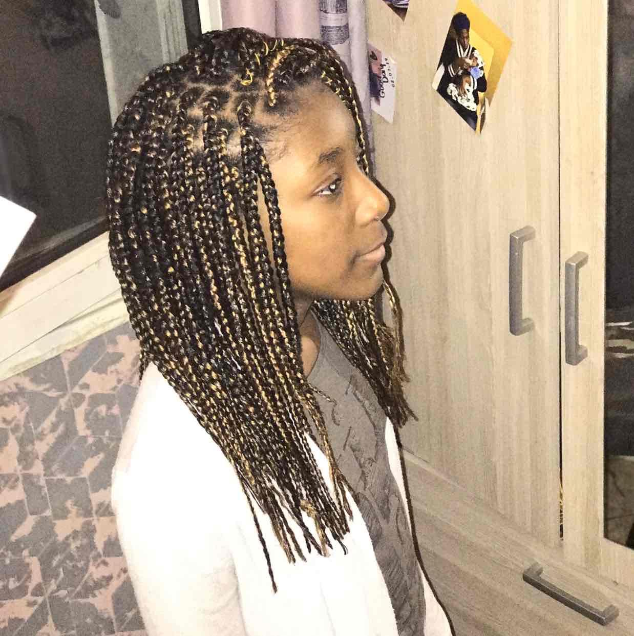 salon de coiffure afro tresse tresses box braids crochet braids vanilles tissages paris 75 77 78 91 92 93 94 95 LEPNCNHI
