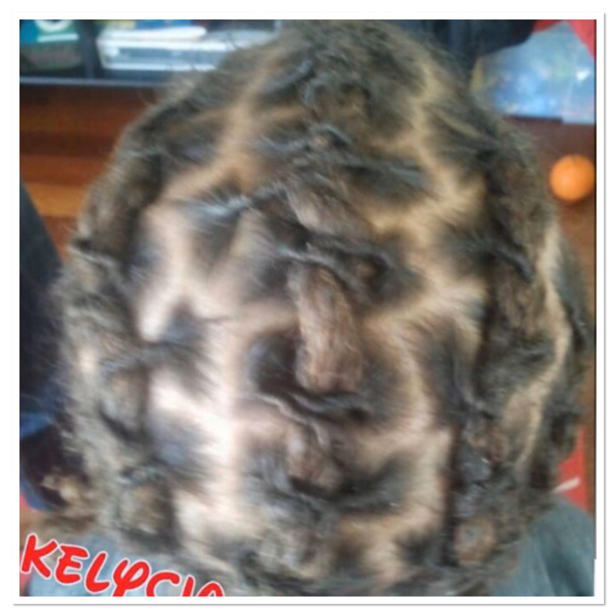 salon de coiffure afro tresse tresses box braids crochet braids vanilles tissages paris 75 77 78 91 92 93 94 95 ZOULAEDN