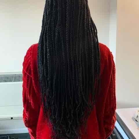 salon de coiffure afro tresse tresses box braids crochet braids vanilles tissages paris 75 77 78 91 92 93 94 95 YJDYGREI