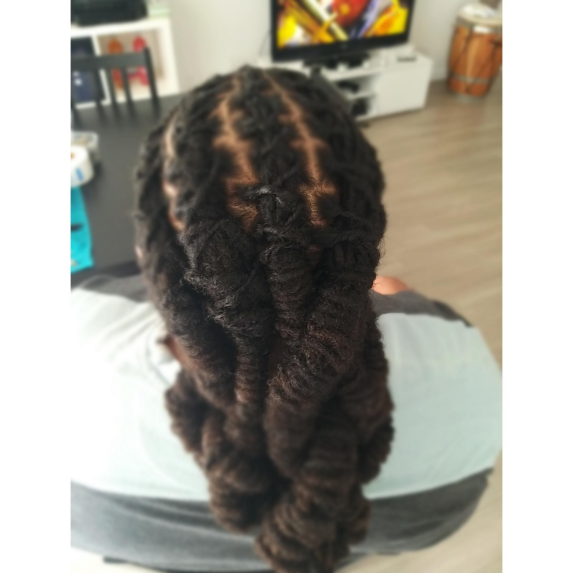 salon de coiffure afro tresse tresses box braids crochet braids vanilles tissages paris 75 77 78 91 92 93 94 95 HZENWQZH