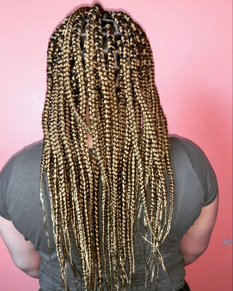 salon de coiffure afro tresse tresses box braids crochet braids vanilles tissages paris 75 77 78 91 92 93 94 95 LYPZFPOC