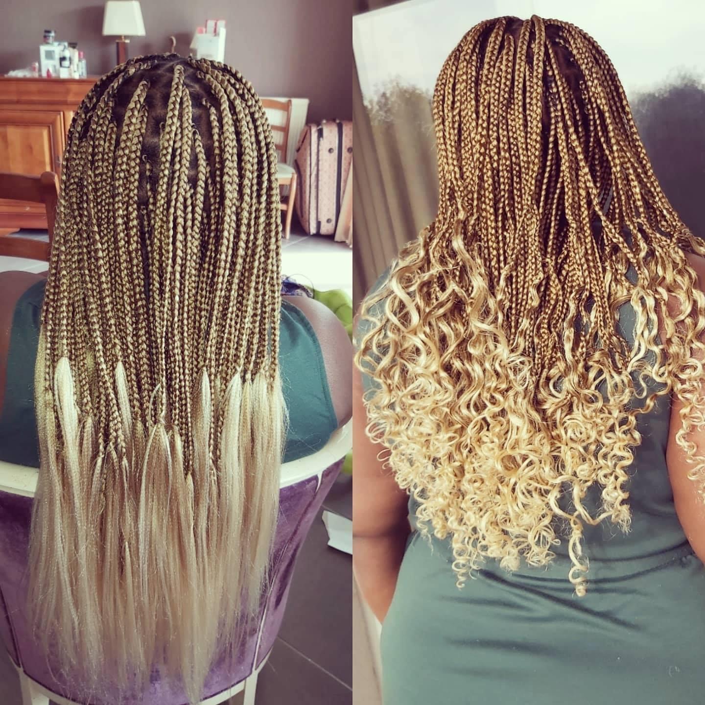 salon de coiffure afro tresse tresses box braids crochet braids vanilles tissages paris 75 77 78 91 92 93 94 95 HVKRHXSI