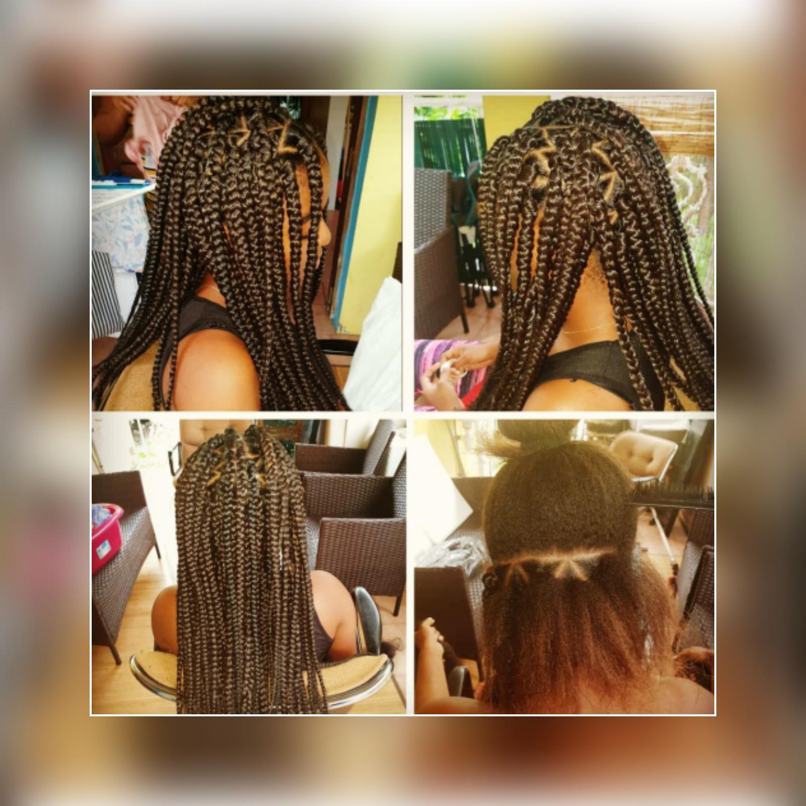 salon de coiffure afro tresse tresses box braids crochet braids vanilles tissages paris 75 77 78 91 92 93 94 95 DWDSAEEX