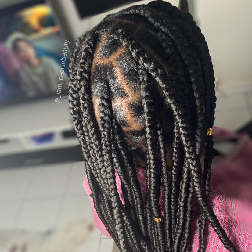 salon de coiffure afro tresse tresses box braids crochet braids vanilles tissages paris 75 77 78 91 92 93 94 95 FSOXSKID