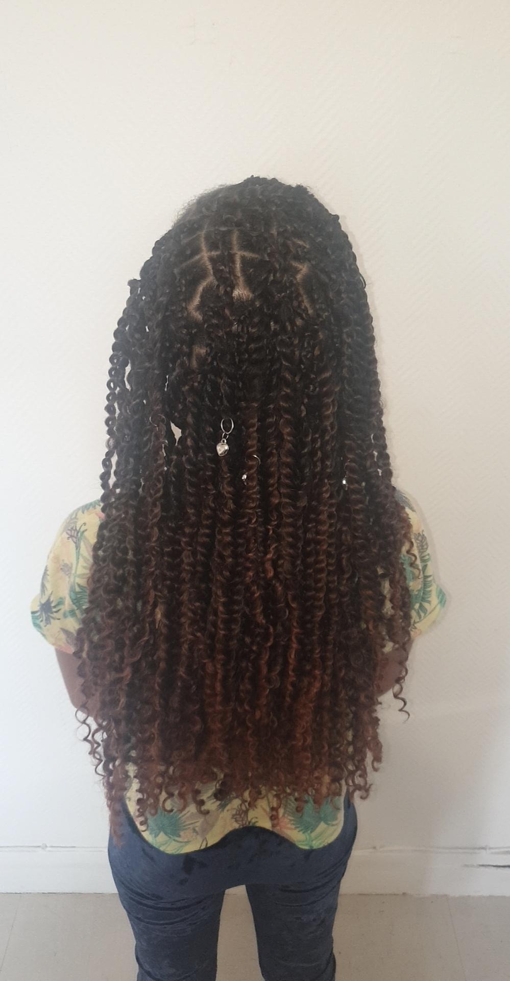 salon de coiffure afro tresse tresses box braids crochet braids vanilles tissages paris 75 77 78 91 92 93 94 95 SRKLJWUB