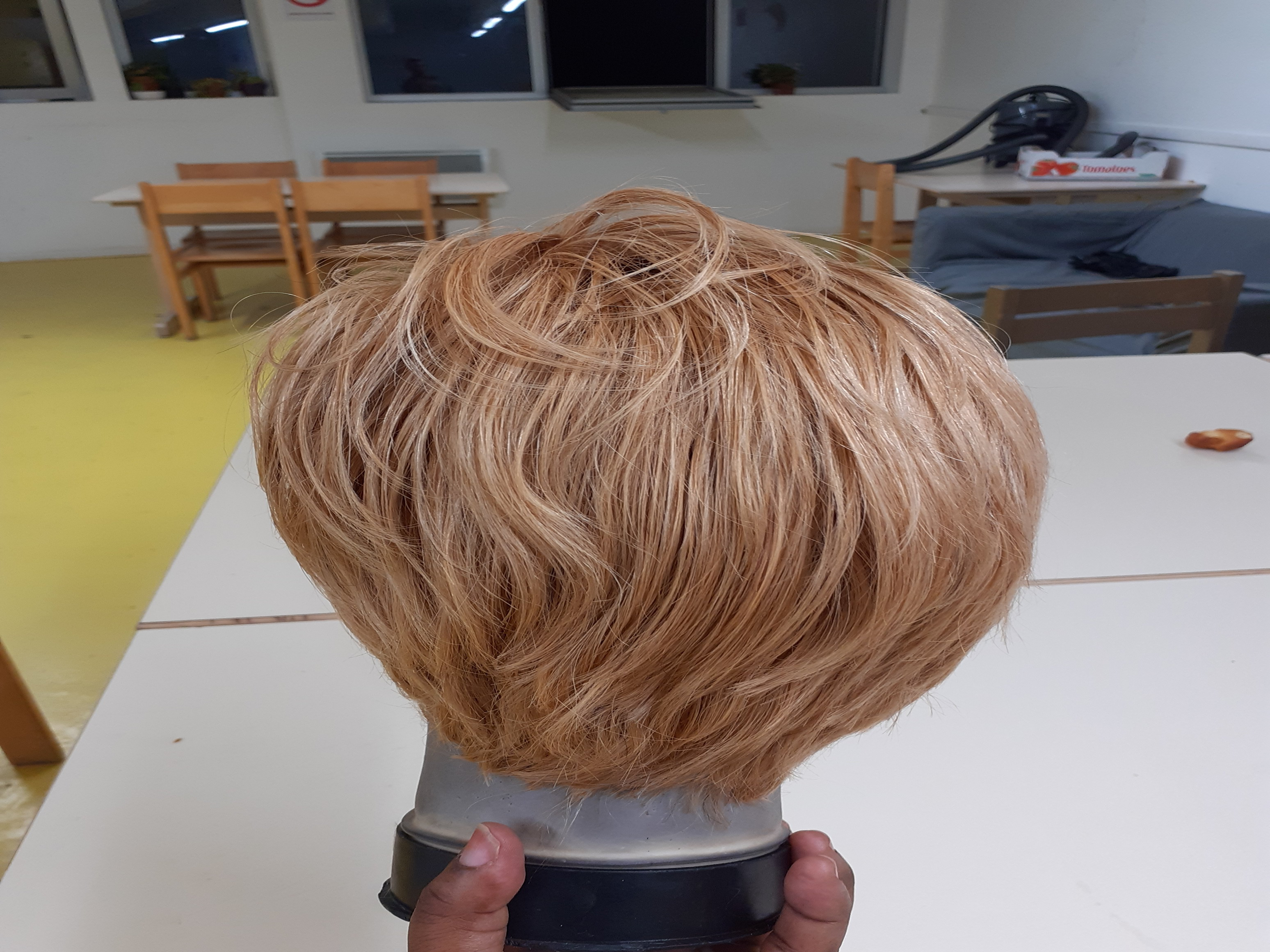 salon de coiffure afro tresse tresses box braids crochet braids vanilles tissages paris 75 77 78 91 92 93 94 95 QEBQKUXE