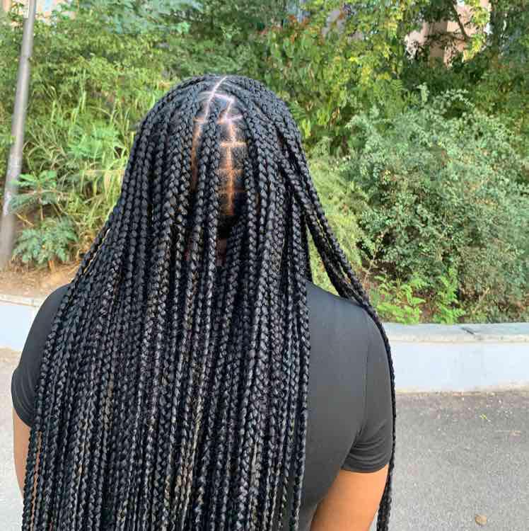 salon de coiffure afro tresse tresses box braids crochet braids vanilles tissages paris 75 77 78 91 92 93 94 95 WDGXENEG