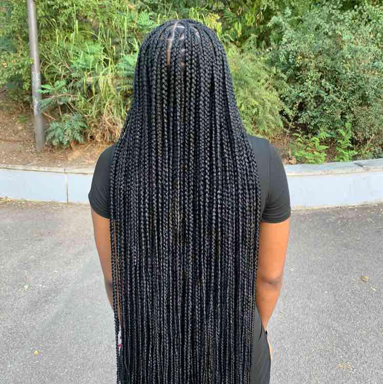 salon de coiffure afro tresse tresses box braids crochet braids vanilles tissages paris 75 77 78 91 92 93 94 95 XFIFKLLT