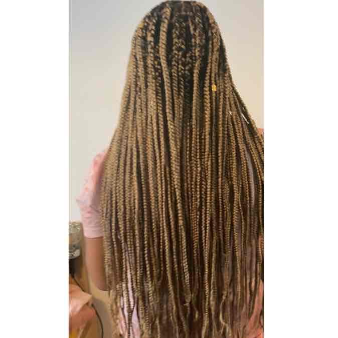 salon de coiffure afro tresse tresses box braids crochet braids vanilles tissages paris 75 77 78 91 92 93 94 95 DGROLCJX