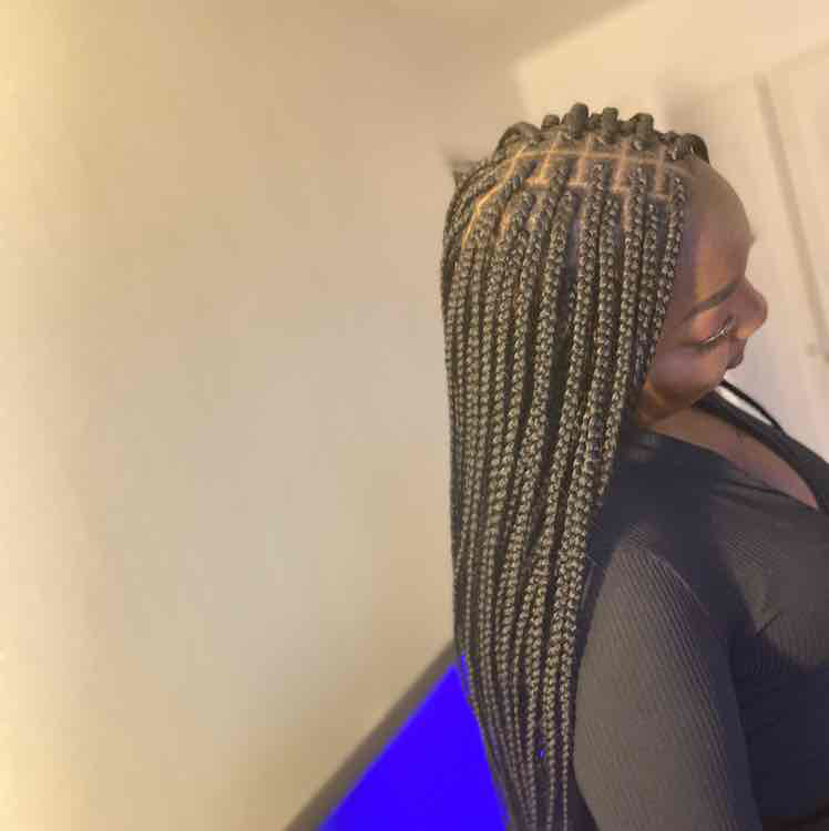 salon de coiffure afro tresse tresses box braids crochet braids vanilles tissages paris 75 77 78 91 92 93 94 95 JDQOGSPW