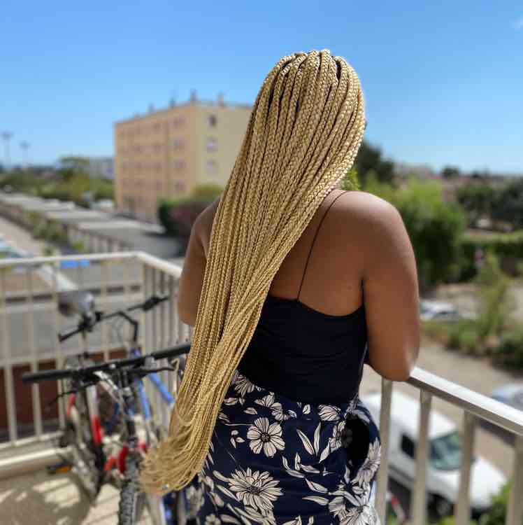 salon de coiffure afro tresse tresses box braids crochet braids vanilles tissages paris 75 77 78 91 92 93 94 95 JRFIYYNU