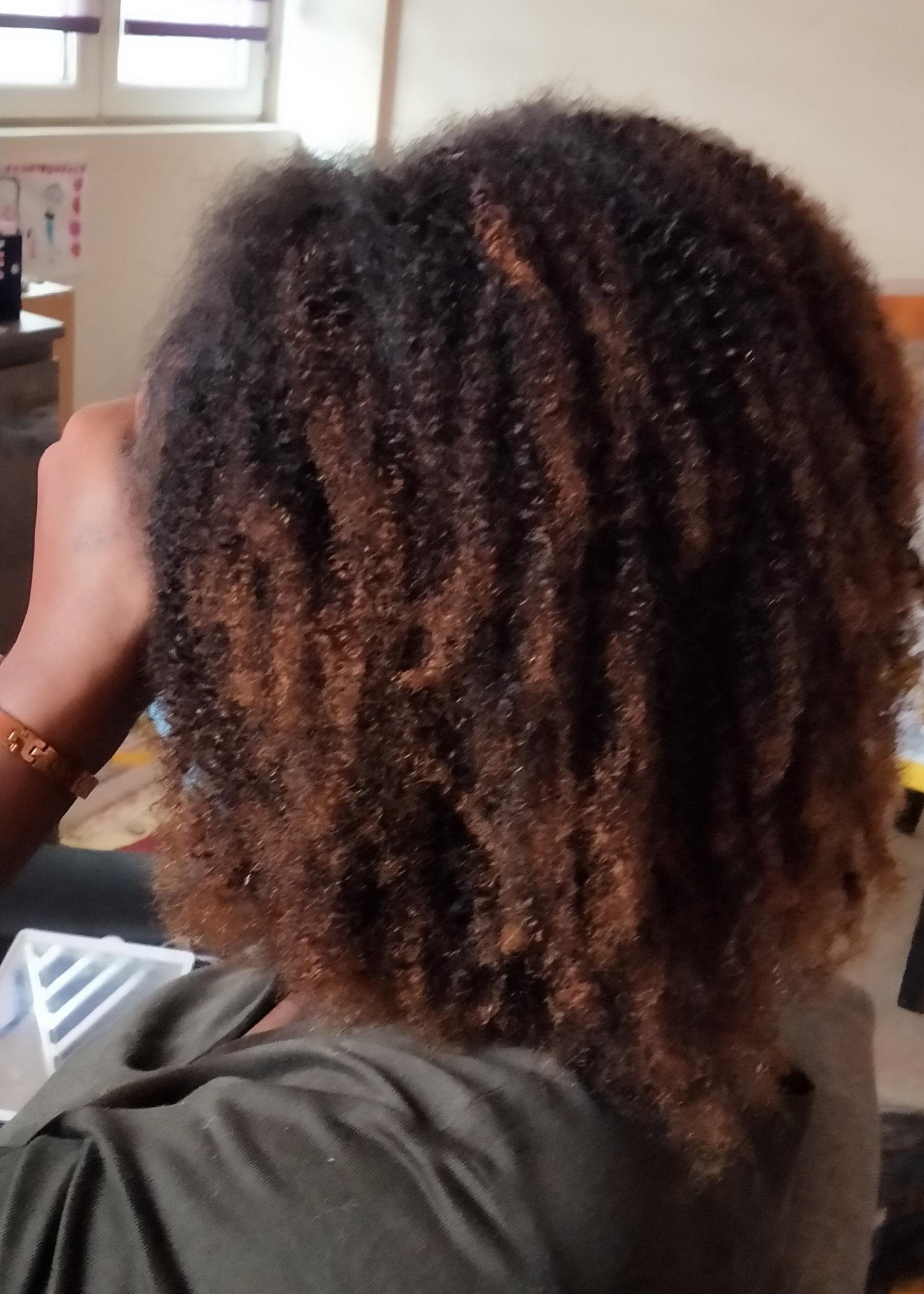 salon de coiffure afro tresse tresses box braids crochet braids vanilles tissages paris 75 77 78 91 92 93 94 95 BMFGGZWY