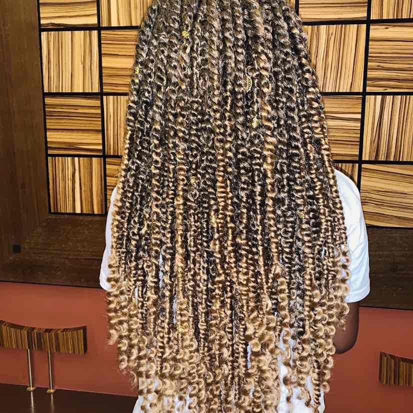 salon de coiffure afro tresse tresses box braids crochet braids vanilles tissages paris 75 77 78 91 92 93 94 95 ANTNYTVQ