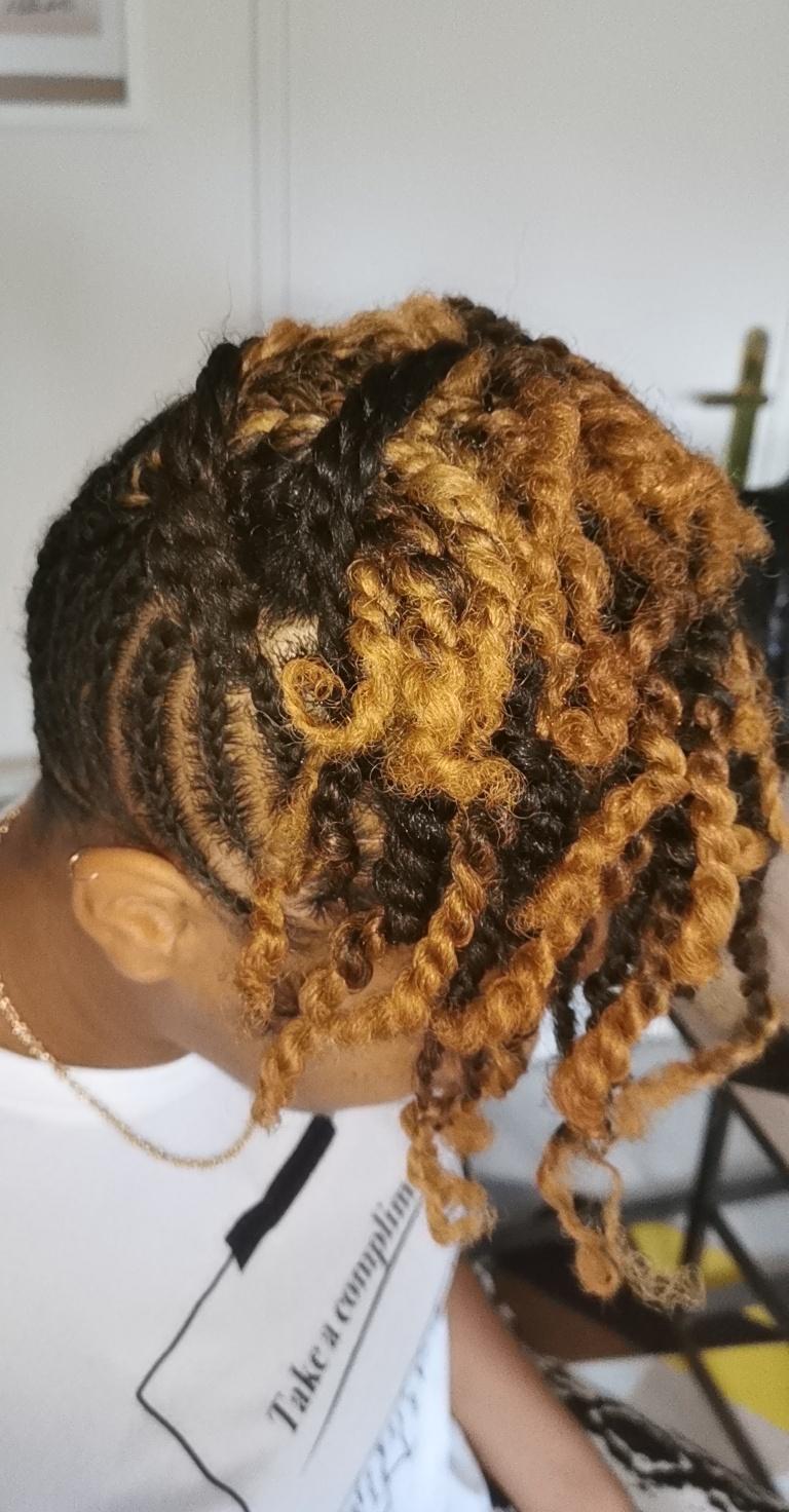 salon de coiffure afro tresse tresses box braids crochet braids vanilles tissages paris 75 77 78 91 92 93 94 95 DSQBJUVD