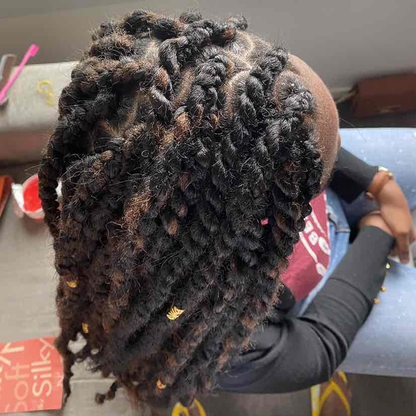salon de coiffure afro tresse tresses box braids crochet braids vanilles tissages paris 75 77 78 91 92 93 94 95 ANLUGPQJ