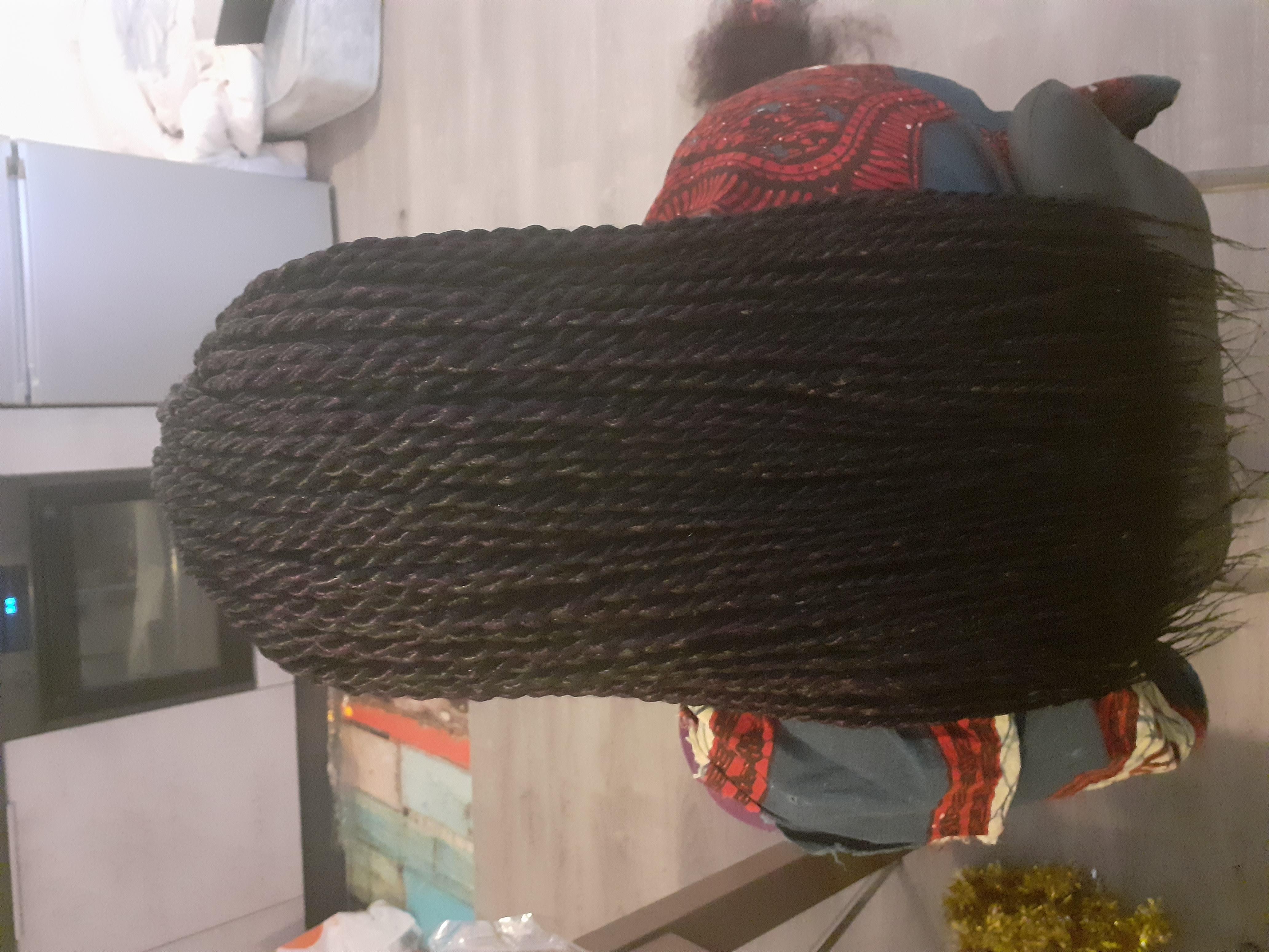 salon de coiffure afro tresse tresses box braids crochet braids vanilles tissages paris 75 77 78 91 92 93 94 95 GOVDPWHX