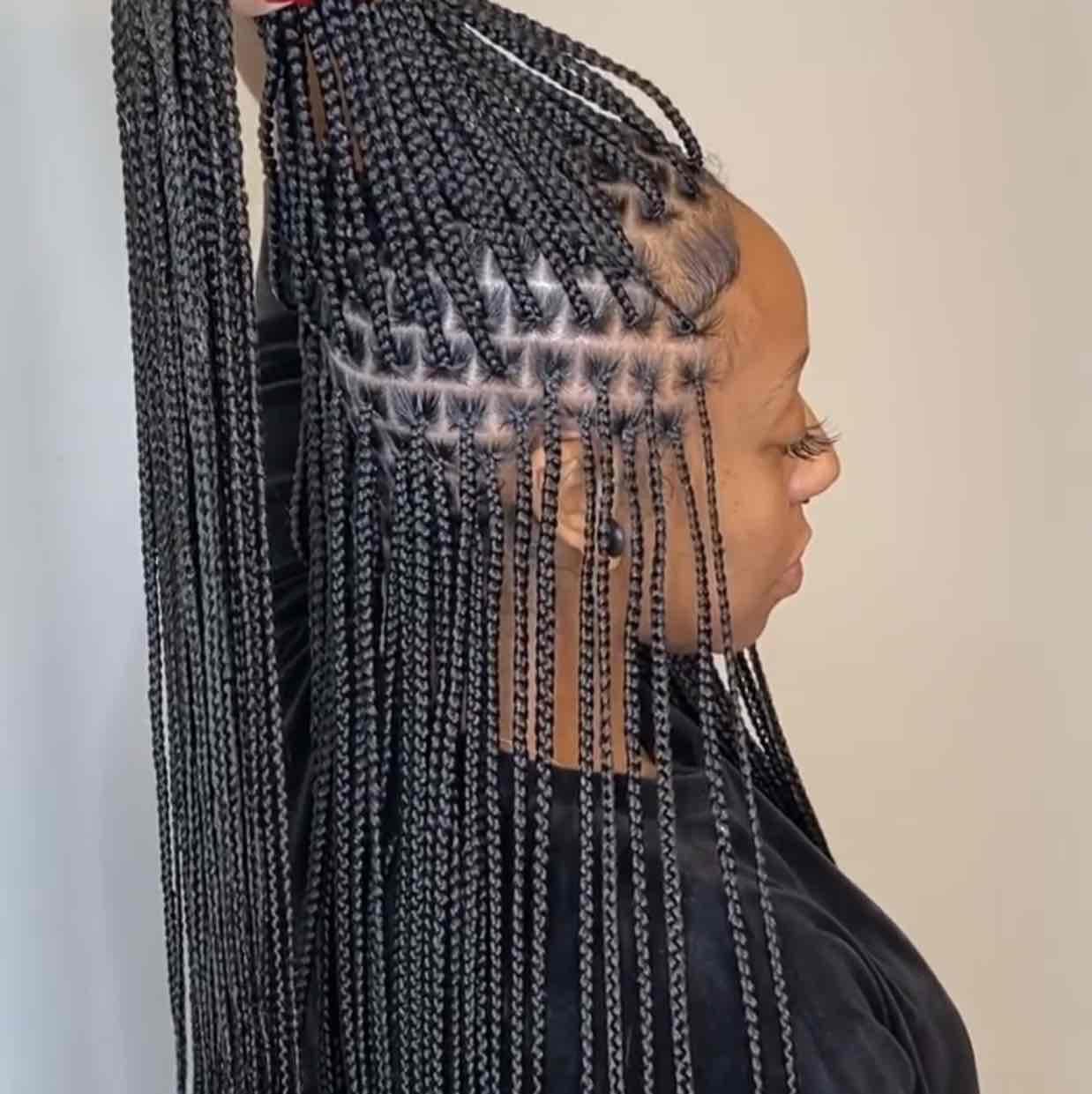 salon de coiffure afro tresse tresses box braids crochet braids vanilles tissages paris 75 77 78 91 92 93 94 95 MPWBMSKH