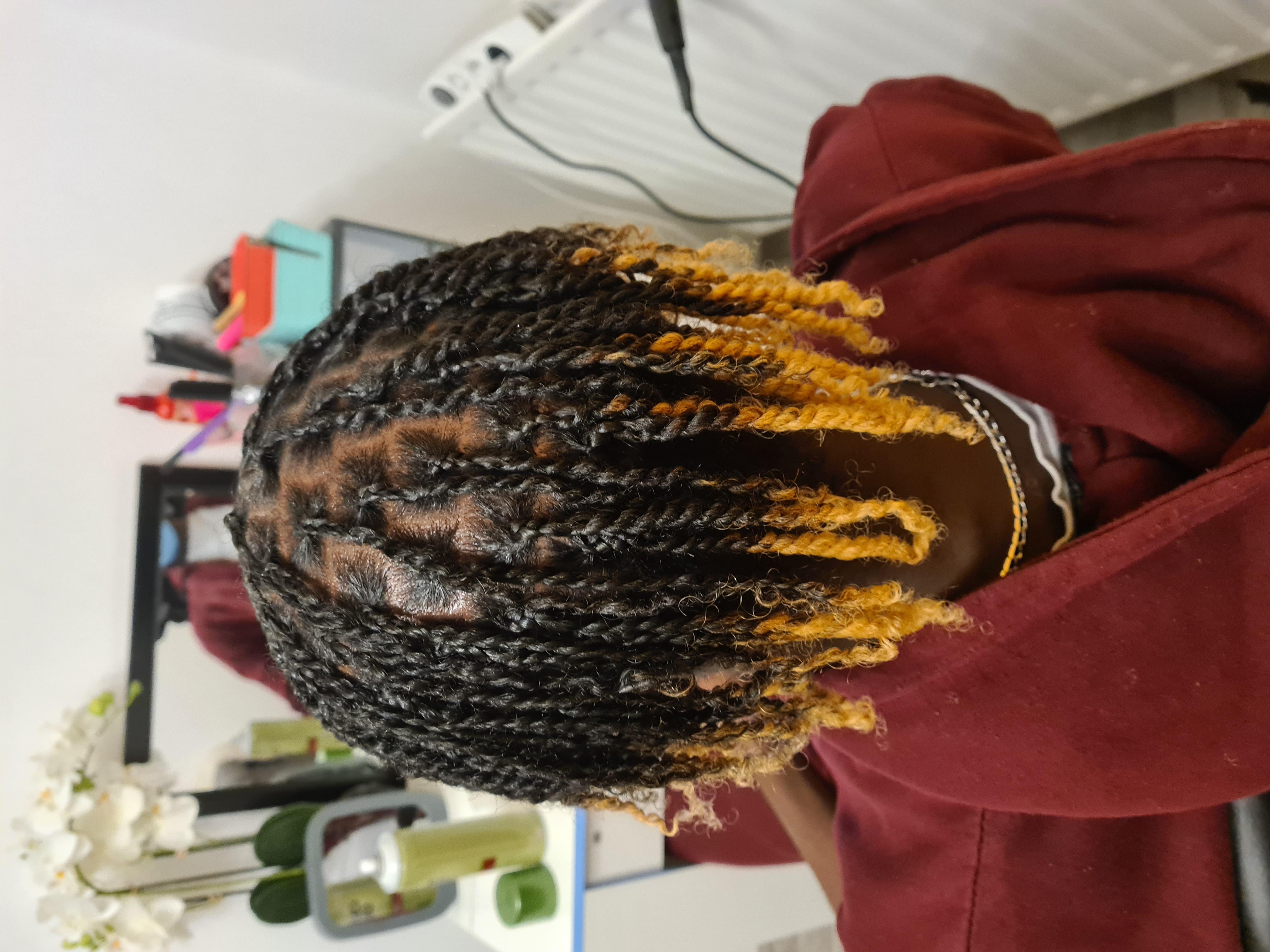salon de coiffure afro tresse tresses box braids crochet braids vanilles tissages paris 75 77 78 91 92 93 94 95 CTDEGFDU