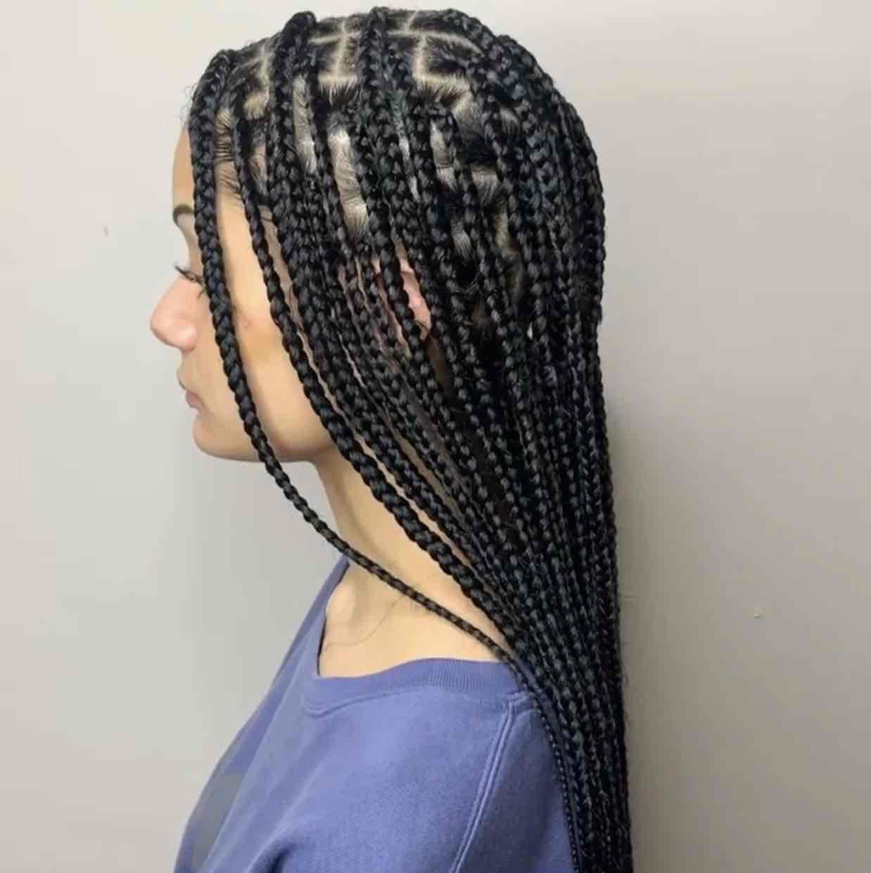 salon de coiffure afro tresse tresses box braids crochet braids vanilles tissages paris 75 77 78 91 92 93 94 95 TNRIYDFM