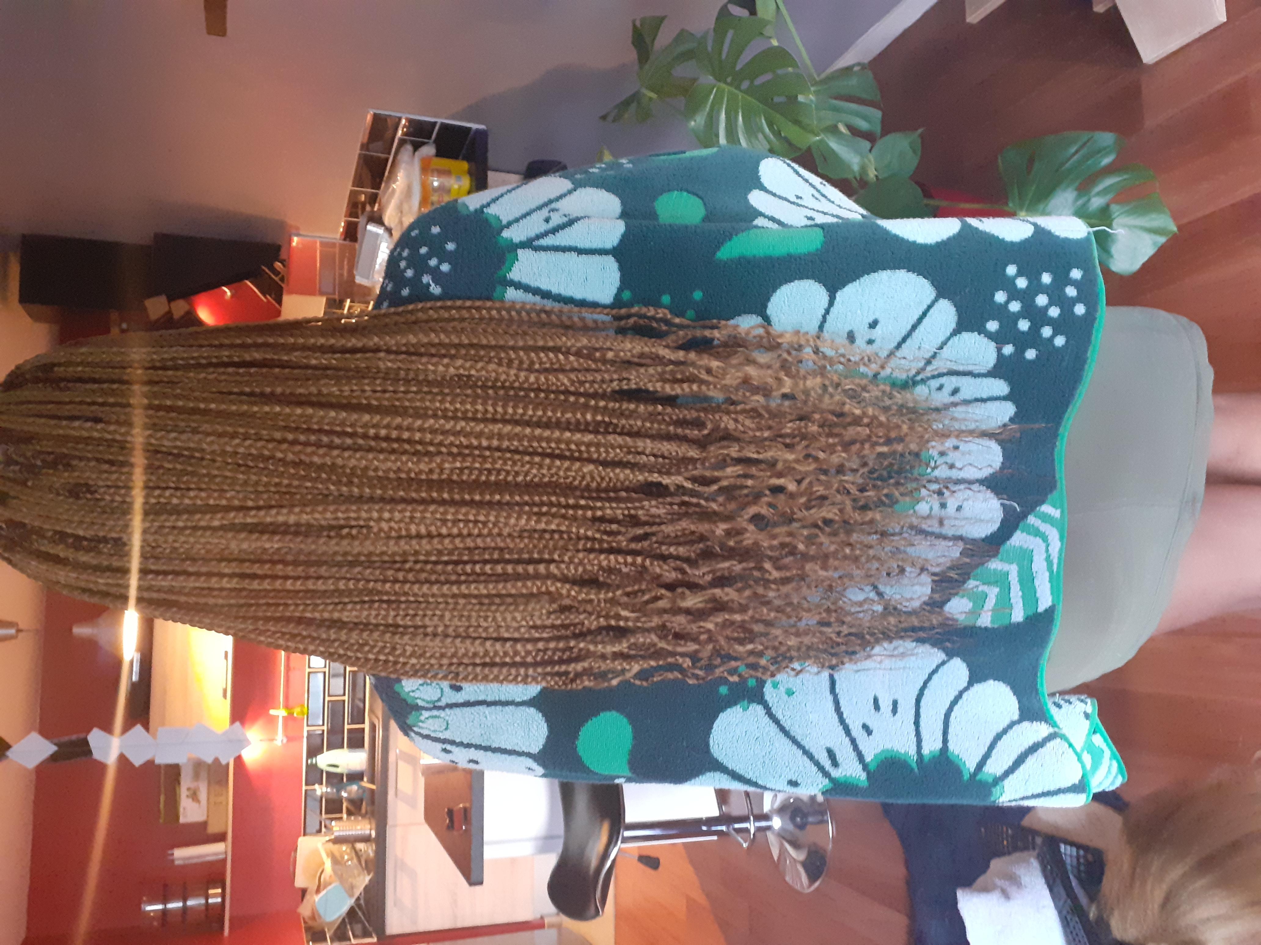 salon de coiffure afro tresse tresses box braids crochet braids vanilles tissages paris 75 77 78 91 92 93 94 95 FEXMFHFB