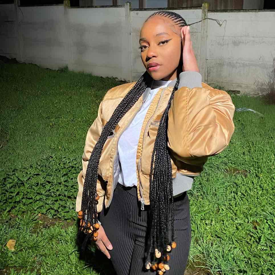 salon de coiffure afro tresse tresses box braids crochet braids vanilles tissages paris 75 77 78 91 92 93 94 95 NKSHBFDZ