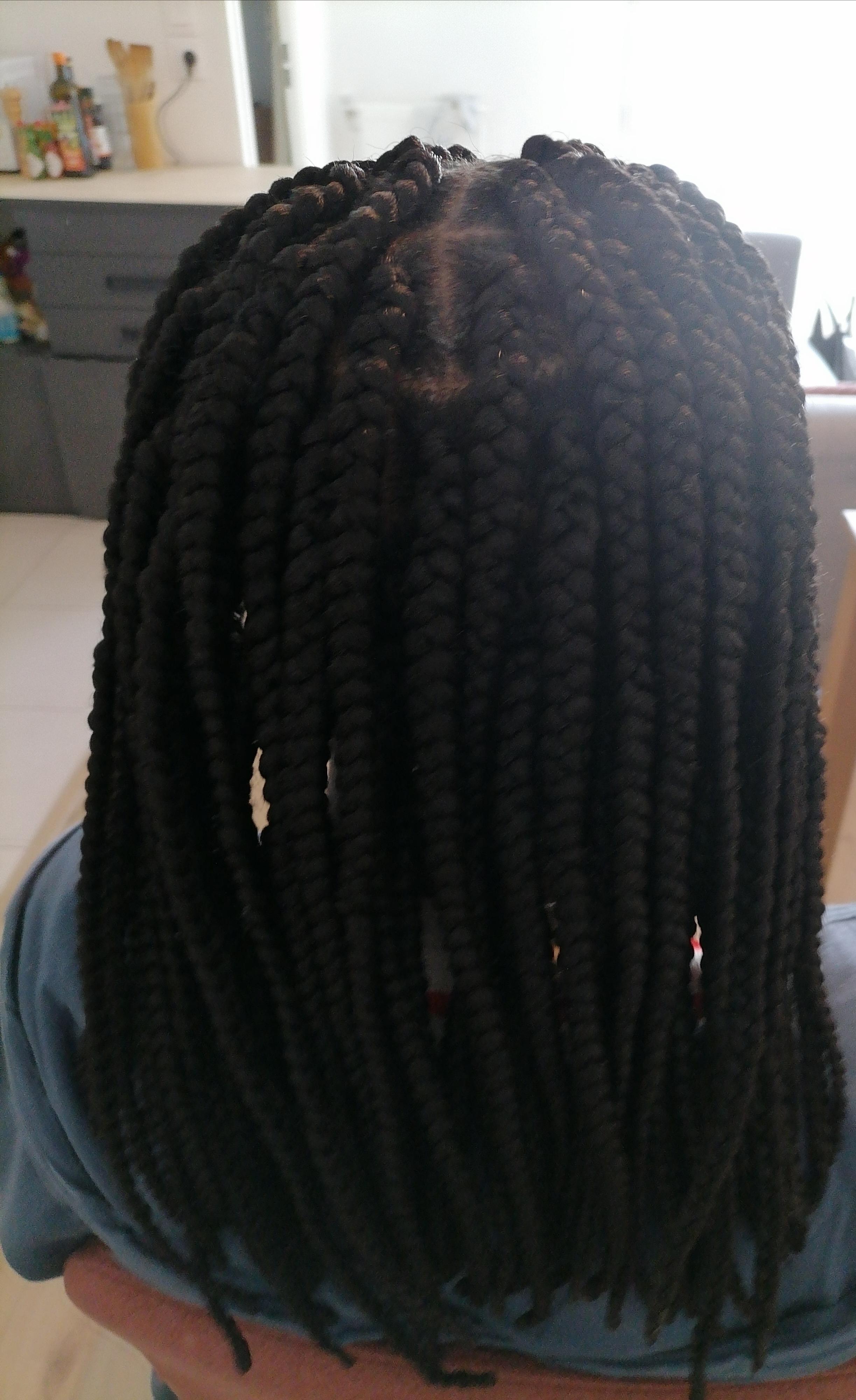 salon de coiffure afro tresse tresses box braids crochet braids vanilles tissages paris 75 77 78 91 92 93 94 95 LKGKFNAE