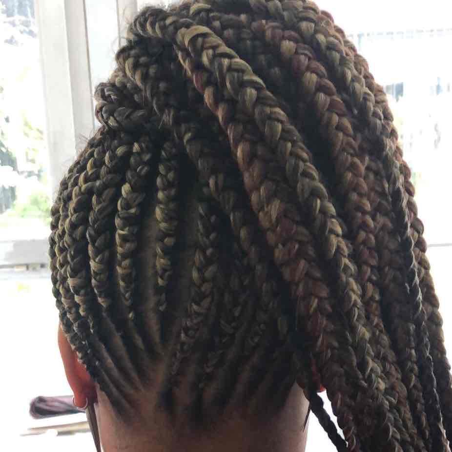 salon de coiffure afro tresse tresses box braids crochet braids vanilles tissages paris 75 77 78 91 92 93 94 95 GEORHOGT