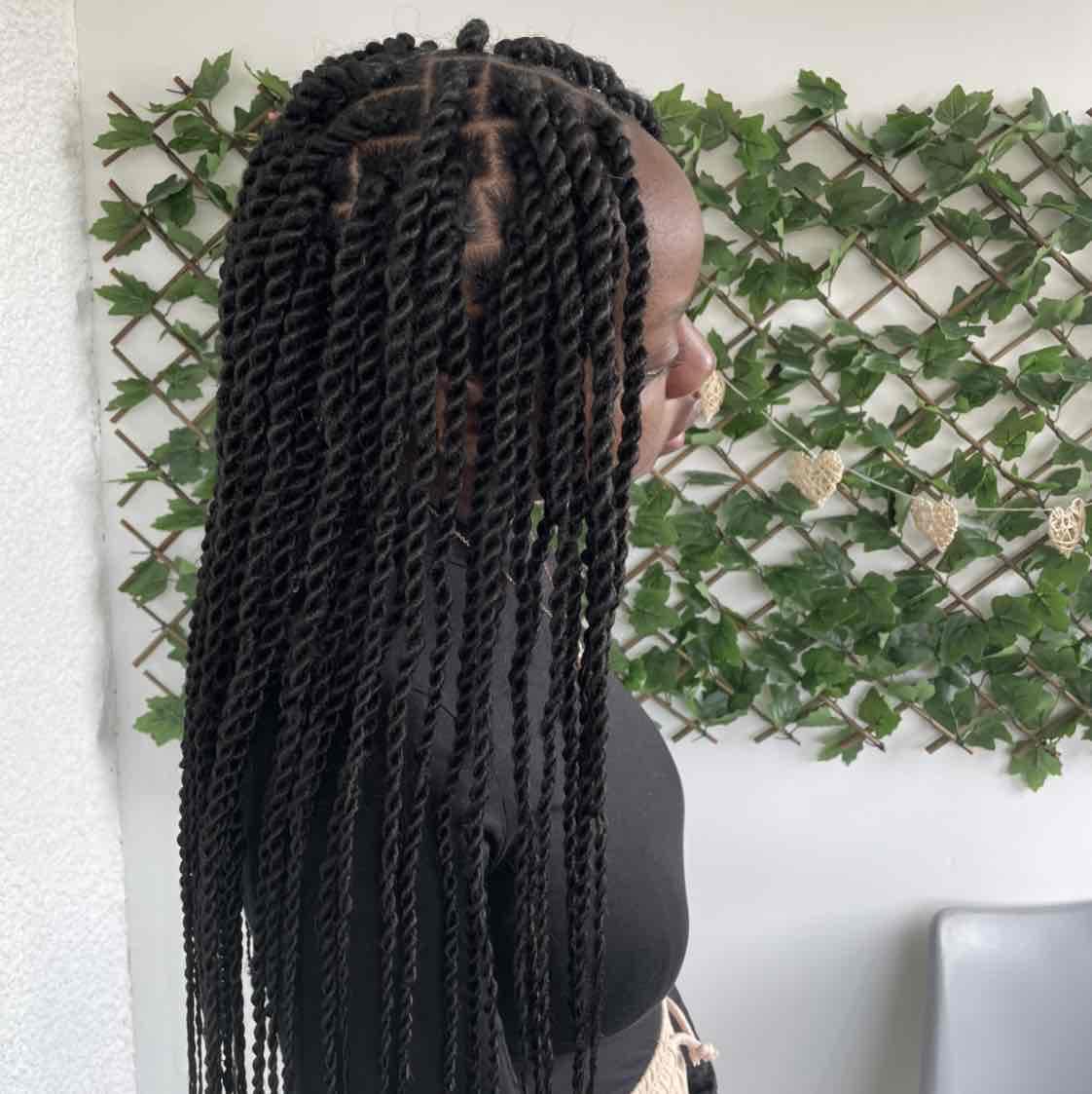 salon de coiffure afro tresse tresses box braids crochet braids vanilles tissages paris 75 77 78 91 92 93 94 95 KAWZJKZS