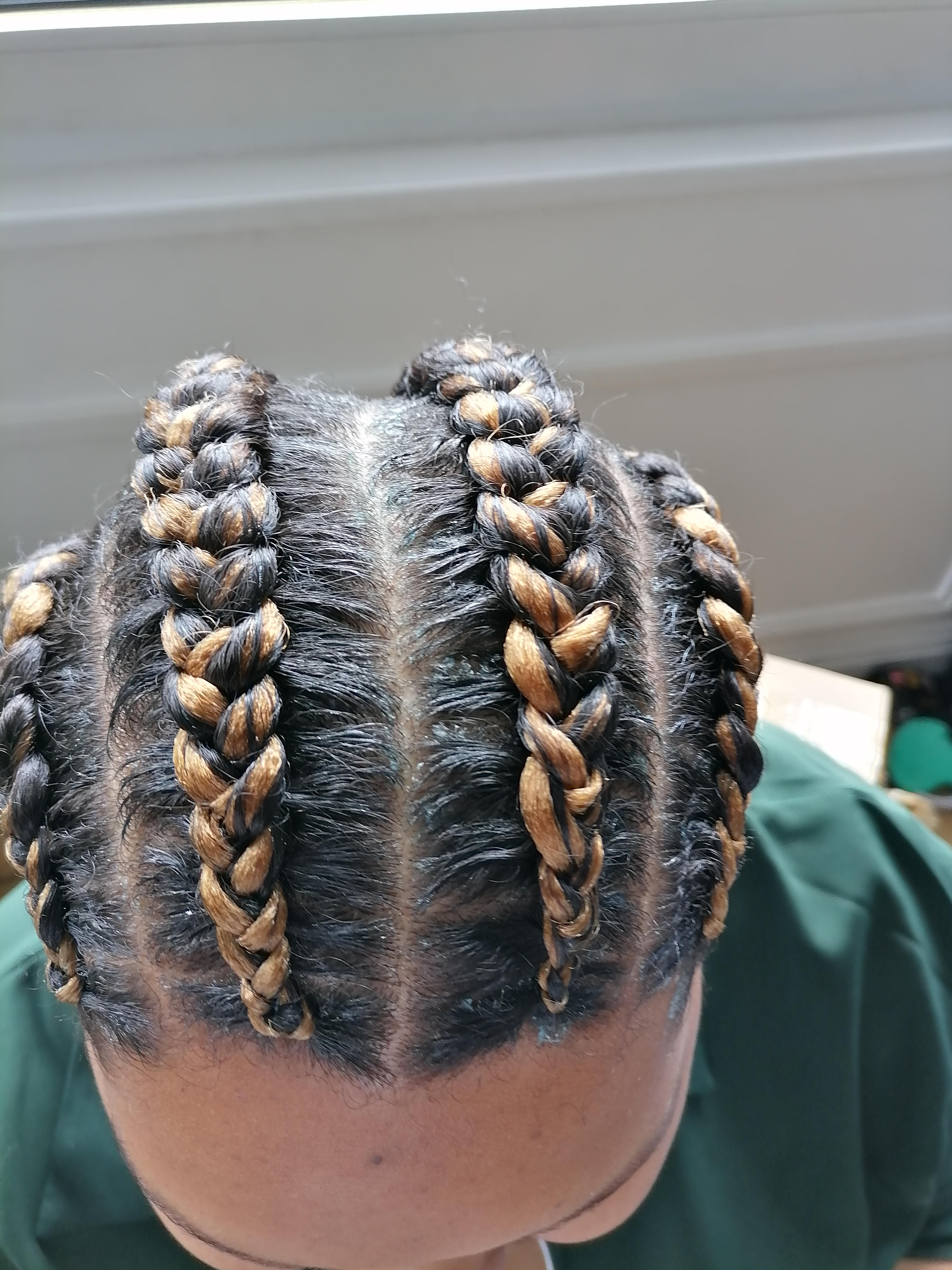 salon de coiffure afro tresse tresses box braids crochet braids vanilles tissages paris 75 77 78 91 92 93 94 95 HTWKWGNU