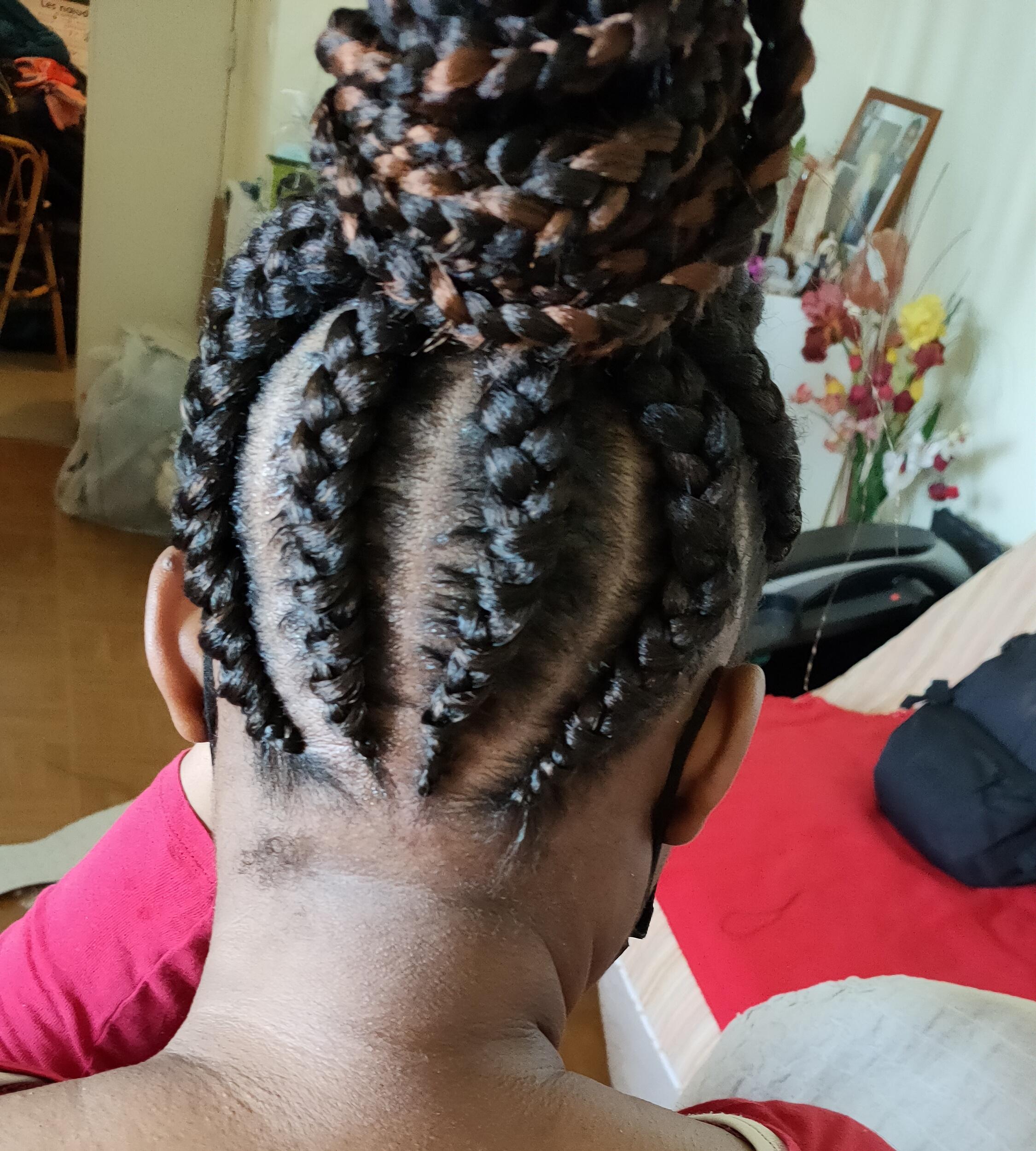 salon de coiffure afro tresse tresses box braids crochet braids vanilles tissages paris 75 77 78 91 92 93 94 95 BIZYAMQY