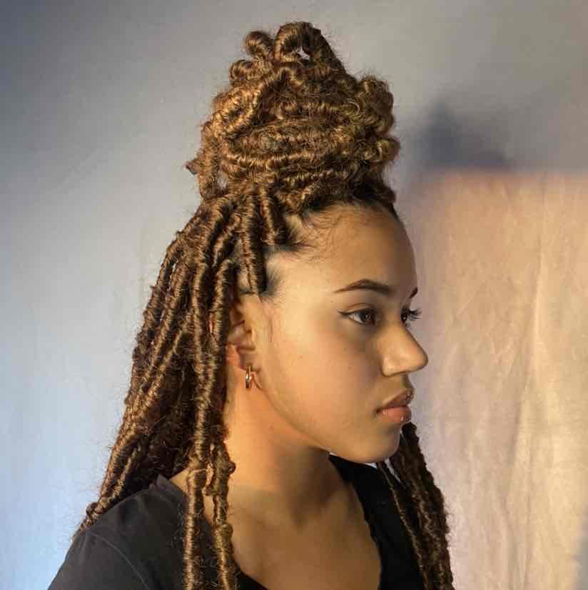salon de coiffure afro tresse tresses box braids crochet braids vanilles tissages paris 75 77 78 91 92 93 94 95 PTFMSTAX