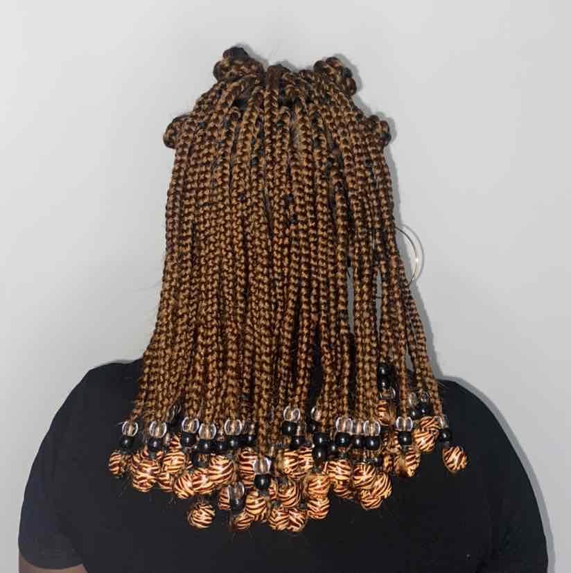 salon de coiffure afro tresse tresses box braids crochet braids vanilles tissages paris 75 77 78 91 92 93 94 95 TPFJRZML