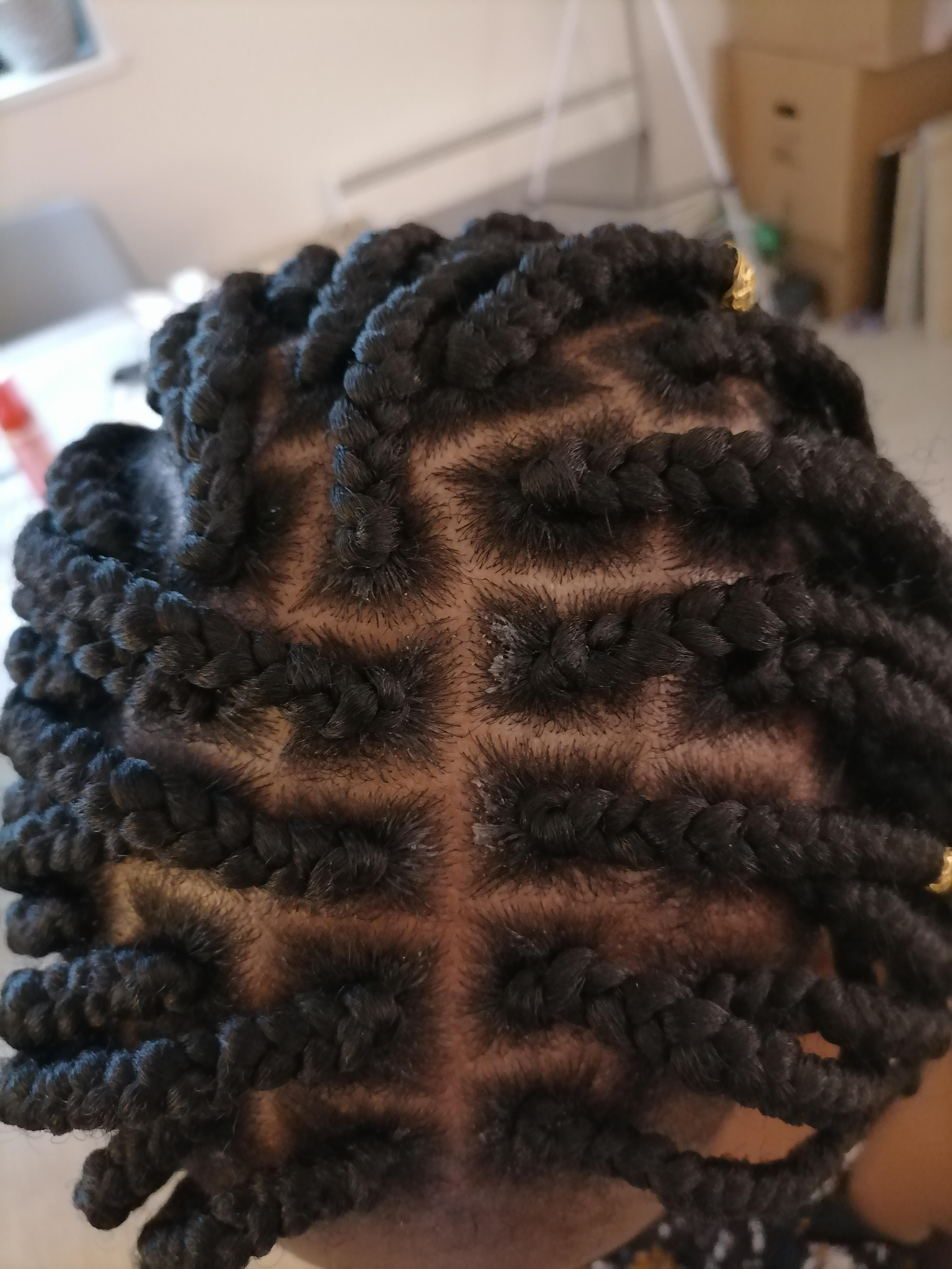 salon de coiffure afro tresse tresses box braids crochet braids vanilles tissages paris 75 77 78 91 92 93 94 95 PMTLGRLJ